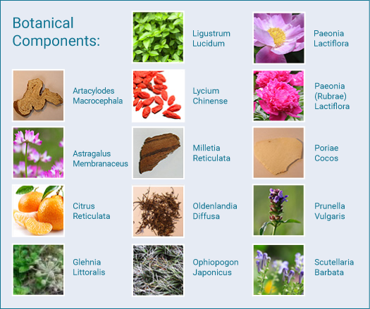 Botanical Components